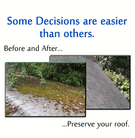 Portland Oregon Roof Cleaning By Jnr Industries